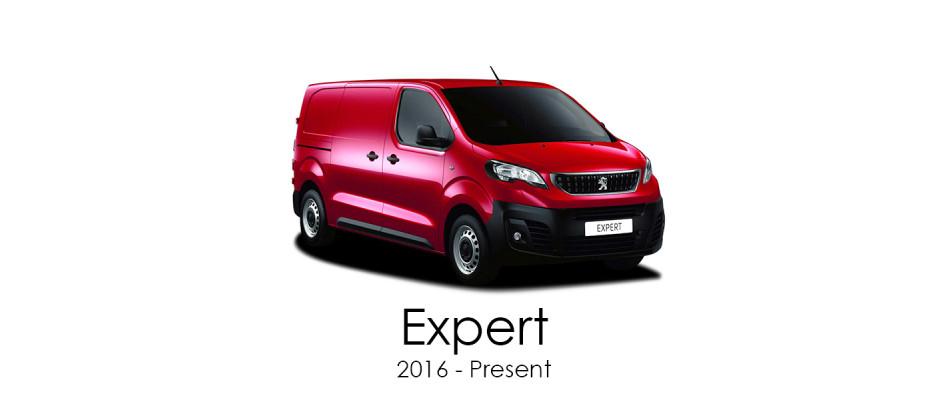 Expert 2016 - Present